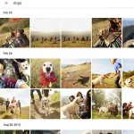Google Photos search function - Android app